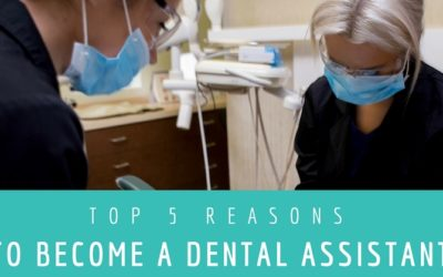Top 5 Reasons You Should Become a Dental Assistant